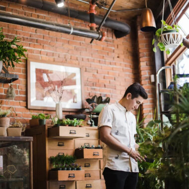 Mistakes people make about indoor plants